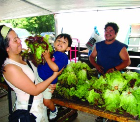 Hospital-based farmers markets offer affordable  fresh produce and nutrition education to communities throughout NYC.